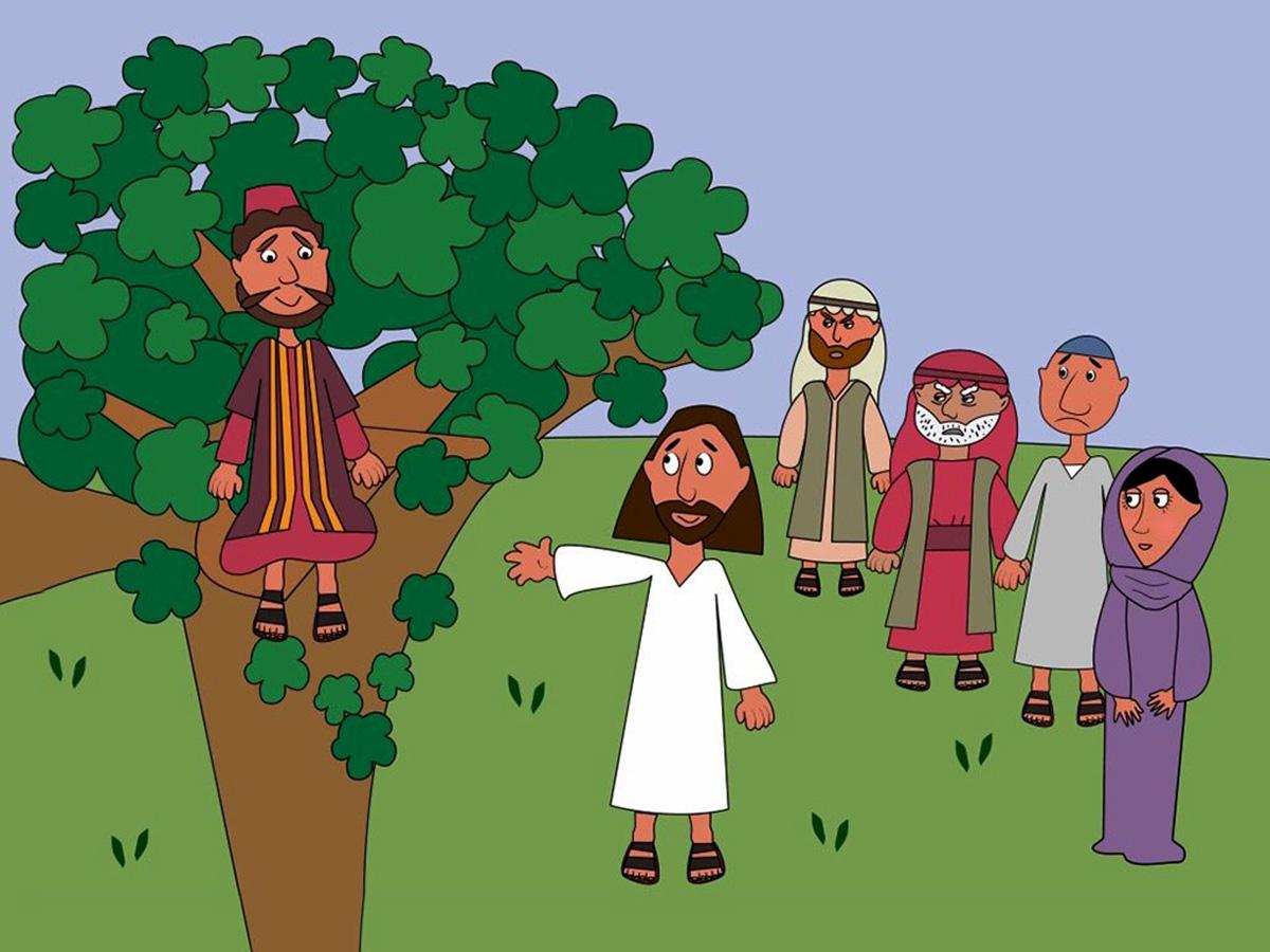 Jesus sees Zacchaeus in the tree. Sue Bentley/FreeBibleimages.org